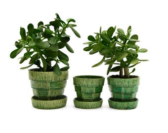 Set of Three Green Basket Weave Pattern McCoy Planters
