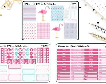 1187~~Pretty Pink Flamingo Weekly Kit Planner Stickers.