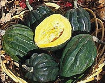 Acorn Table Queen Squash Seeds