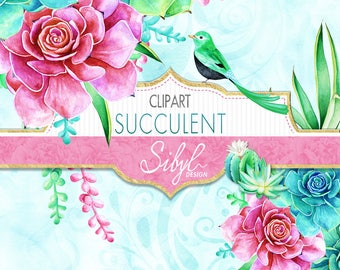 60% OFF SALE Digital Watercolor Floral Clipart, Succulent Clipart, Cactus clip art, Aloe Vera, Cacti, Plant, Botanical Greenery PNG, Diy