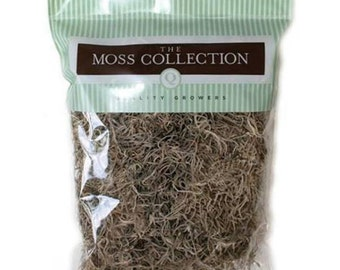 Spanish Moss The Moss Collection Code: NM-QG1500