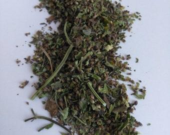 Bergamot Mint (Mentha citrata)