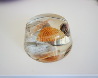Sea Shell Paper Weight