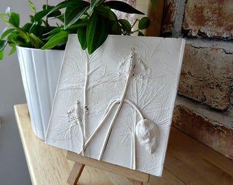 Welsh Poppy Decorative Tile - Botanical - Gardening - Scotland
