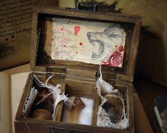 "Werewolf Specimen Curio Box Props ""HANDMADE""Fantasy Creature/Mythology/Folklore/FairyTale/Fairy gift Ideas/dungeons & dragons/oddities/lycan"