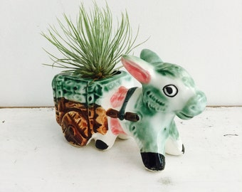 Donkey and Cart Planters - one left small