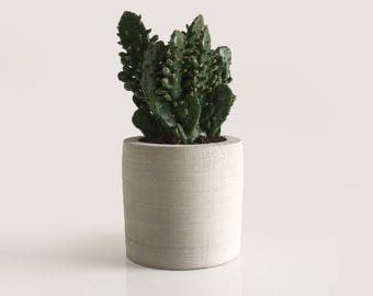 Maxi Planter / Handmade Concrete Pot