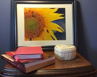 Fine Art Photography Print, Sunflower Photography, Sunflower Photo, Home Decor.