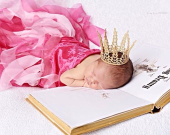 Sleeping Beauty Photography Prop Set ~ Newborn Photography Prop Package