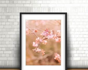Flower Photography, Wall Art, Pink, Flowers, Flower Print, Flower Wall Art, Pink Flowers, 5x7, 8x10, 8x12, 11x14, 12x18, 16x20