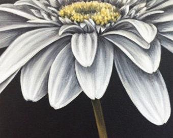 Fine Art Card (Daisy #3)
