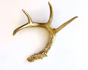 Gold Antler: Painted Real Deer Antler