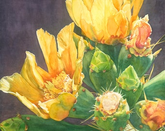 Cactus, handmade art watercolor giclee, painting print, tropical succulents,  detailed,, warm colors, greens, by Phyllis Nathans Art