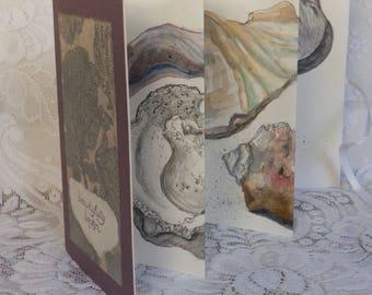 Seashell Book, artist book, original art, seashell drawings, accordian book, artist's sketches, seashell paintings, handmade book