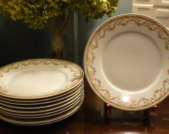 Set of 10 Victoria Austria Rose Garland Salad Plates