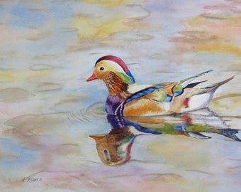 Wood Duck original watercolor duck painting colorful bird 9x12