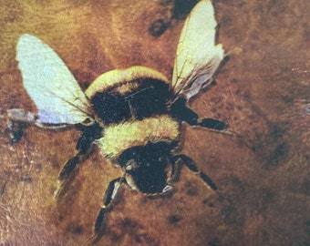 Leather bee design placemat