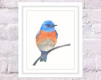 Bluebird Print, Watercolor Bluebird, Passerine Thrush bird on Branch, Bluebird Illustration, Blue Bird of Happiness, Watercolour Bird