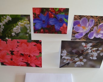 Photo Notecards - The Spring I Collection