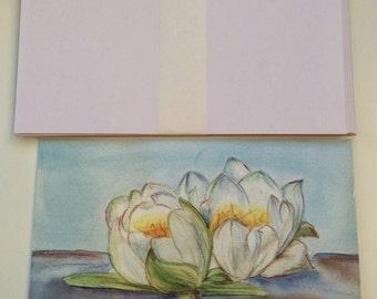 Waterlilies - Åkander