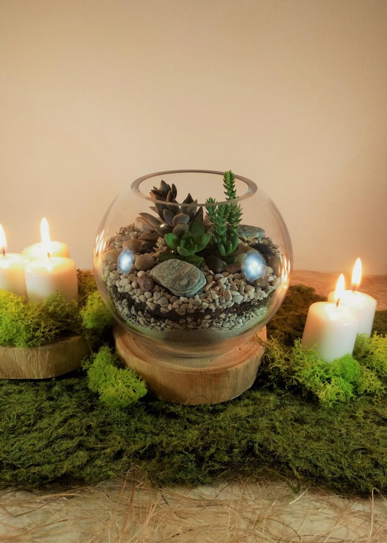 petite succulent terrarium brisbane gold coast by. Black Bedroom Furniture Sets. Home Design Ideas