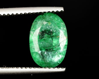 Egl Certified Superb Colombian Emerald Oval Cut 2.15 ct. loose gemstone e7-225