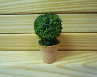 One Dolls House Miniature Topiary Tree