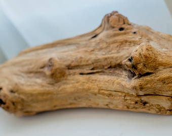 Driftwood - varnished
