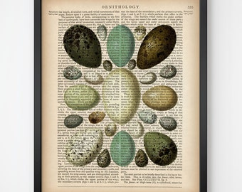 Digital art print, Eggs Illustration, Egg print, Dictionary art print, Print on dictionary, Upcycled, Dictionary page, 8x10, 11x14 download