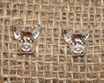 925 Silver earrings bull dog