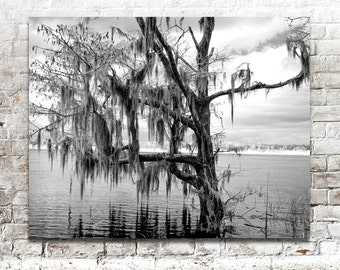 Landscape Photos, Nature Photography, Infrared Photos, Scenic Photos, Alabama, Blakeley State Park, Black White Photography, Wall Art