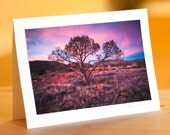 EarthHealing Photo Cards: Mago Sunset