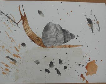 Realistic Snail Watercolor Painting