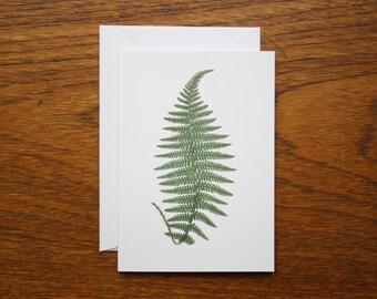 Male Fern: Greeting Card