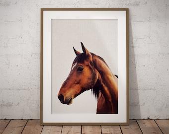 Horse Lover, Horse Lover Gift, Horse Lovers, Farm Animals, Horse Photography, Nursery Animals, Horses Wall Decor, Horse Wall Art, Horses