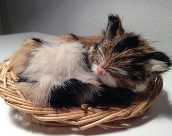 Cat fur of rabbit in his basket vintage