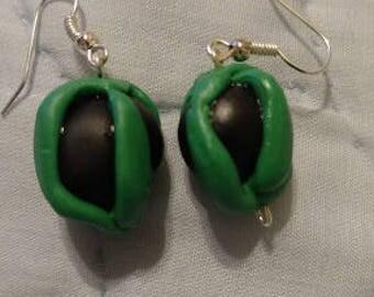 Green and Black Lanturn Earrings