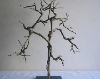 Tree, branch of vine worked art for interior decoration, ornament handmade