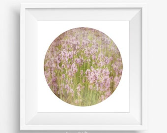 Lavender photo - printable picture - flower photography - purple digital flowers - nature photography - lavender decor - pastel photography