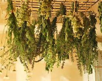 13 Herb Sample Package *B*: Pagan, Wicca