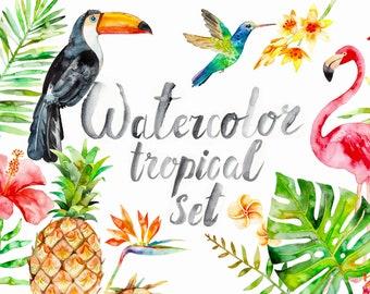 Watercolor Tropical Clipart, summer, flamingo, flower, pineapple, bird, palm,  summer, exotic, hibiscus, monstera, fruit, Hawaii, beach
