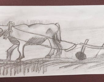 Ox and plow Drawing