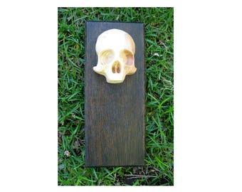 Reclaimed Wood Mahogany and Doug Fir Skull Decorative Wall Plaque