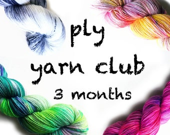 PLY yarn club / hand dyed yarn / 3 month membership / customizable / gift yourself / yarn membership /pancake & lulu yarn of the month club
