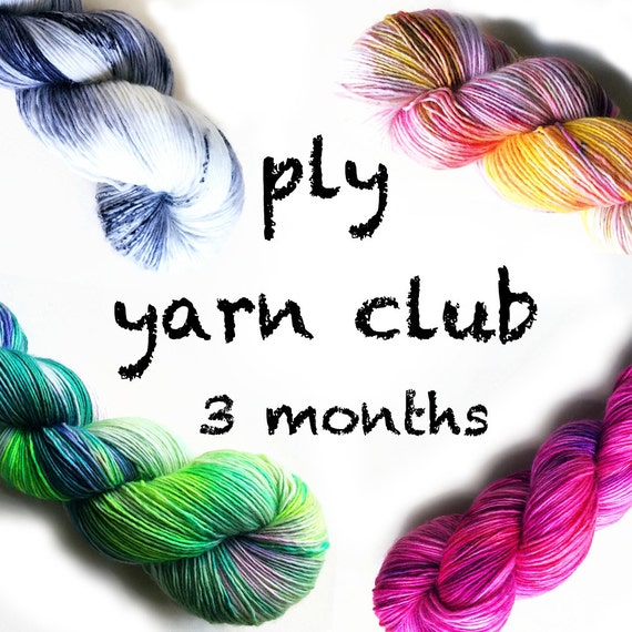 Hand Dyed Yarn Club 3 month membership. Customizable!