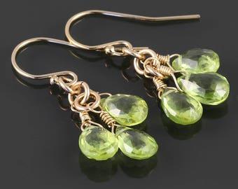 Peridot Cluster Earrings. 3 Stones. Gold Filled Ear Wires. Genuine Gemstone. August Birthstone. Greenery. s17e047