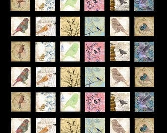 Vignettes of Nature No. 2 - 1x1 - Digital Collage Sheet - Instant Download