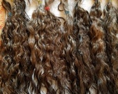 "F178 Lustrous Brushed Bundled Washed 8"" First shear mohair Locks from Hatch"