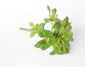 Fake Succulents - Artificial Green Aeonium Succulent - faux succulents, artificial succulents - ITEM 0524