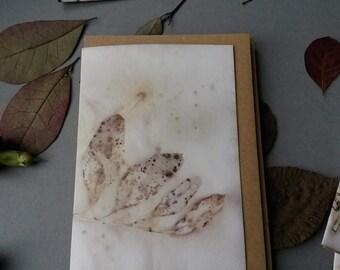 Eco Print Card, Botanical Monoprint, Blank Greeting Card, wabi-sabi, ooak